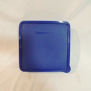 New Tupperware Snak N Stor Container